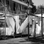 Five Gardens by Samir Raut